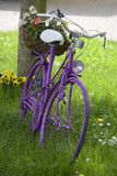 Romantic decorated lady's bicycle with flower basket