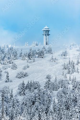 Feldberg Gipfel im Schwarzwald Poster