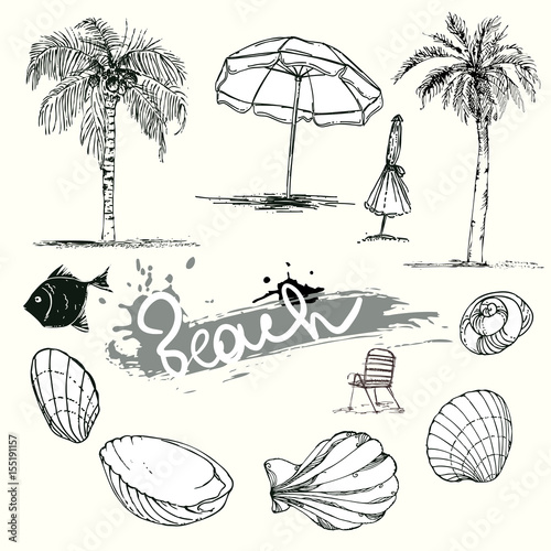 Hand Drawn Set Ilrations Silhouette Of Palm Trees Beach Umbrella Chair Seashells