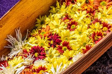Closeup of flowers on Lent carpet, Antigua, Guatemala