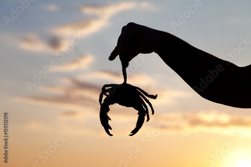 Silhouette of hand with caught crab and sunset sky Poster