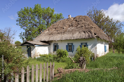 Plagát The old clay house under the thatched roof is destroyed among the bright young spring life