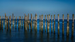 pilings at the ocean with blue sky backgrounds at Point Roberts,USA
