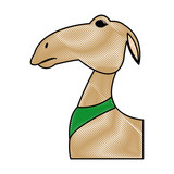 cartoon camel animal manger design vector illustration - 155615331