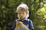 Cute blonde boy with dandelions outdoors