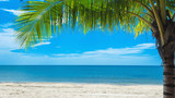 Beautiful tropical beach for relaxation with coconut tree palm