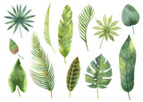 Watercolor set tropical leaves and branches isolated on white background. - 155794375