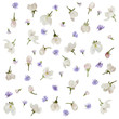 Blue and white flowers spring floral pattern isolated on white background  - 155808190