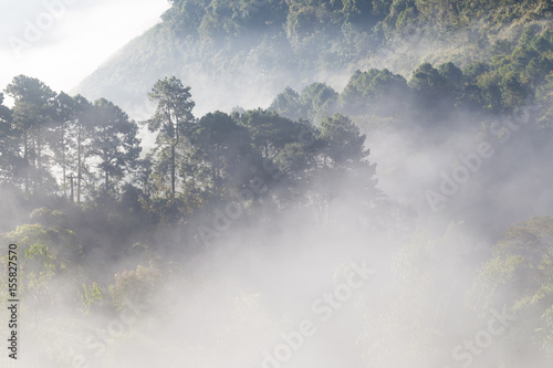 Mountain scenic haze foggy in the morning while sunrise - 155827570