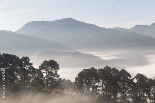Mountain scenic haze foggy in the morning while sunrise - 155827588