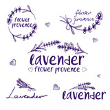 Set of template logo design of abstract icon lavender. Vector illustration - 155908368