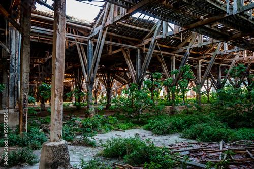 Foto op Aluminium Oude verlaten gebouwen La charpente en bois dans l'usine abandonnée de Toscane