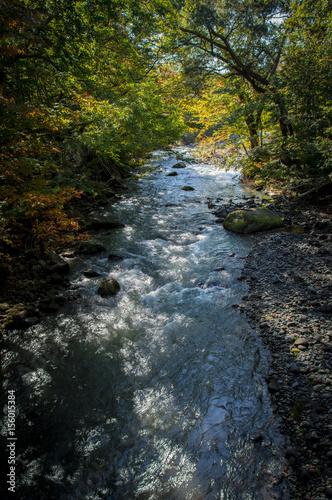 Idyllic nature of Oirase Gorge, Aomori, Japan © Claudia