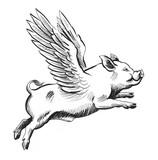 Flying pig. Retro st...