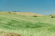 Green hills of tuscany in valley of siena siena