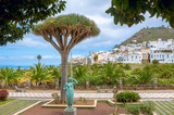Landscape with palm park and residential district in Las Palmas. Gran Canaria, Spain