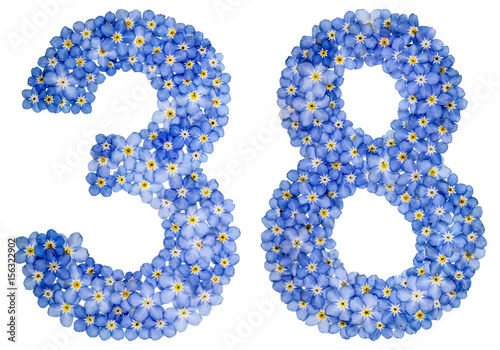 Poster Arabic numeral 38, thirty eight, from blue forget-me-not flowers