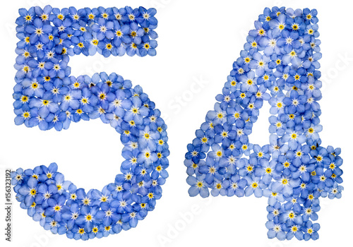 Poster Arabic numeral 54, fifty four, from blue forget-me-not flowers