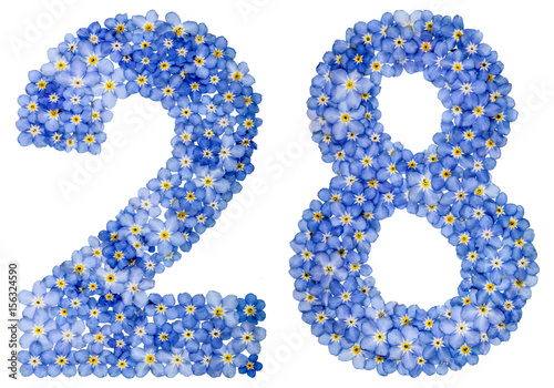 Poster Arabic numeral 28, twenty eight, from blue forget-me-not flowers