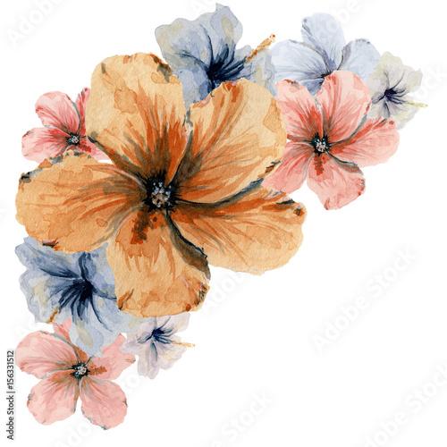 akwarela-recznie-rysowane-rogu-kwiatowy-zestaw-kwiaty