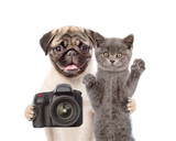 Dog with cat taking pictures. isolated on white background