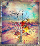 Dry tree in the arid desert, concept of solitude