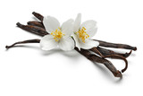 Vanilla sticks with flowers - 156545129