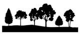 Bäume - 6