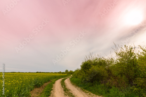 Foto op Canvas Lichtroze Canola fields in spring, and beautiful storm clouds at sunset