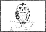 Ink story about owls