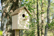 Birdhouse on a birch tree, hand made