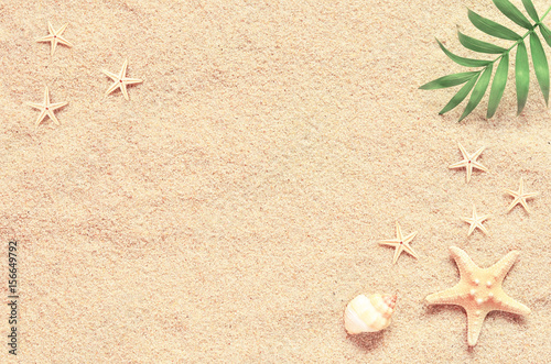 Sea sand with starfish and shells. Top view with copy space Poster