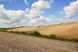undulating cultivated fields