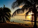 Beautiful white sanded beach and palm trees in the early sunset, Moorea, Tahiti, French Polynesia - 156919301