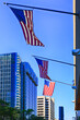 American Flags flying over the sidewalks in downtown Tampa City in Florida