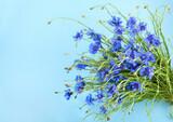 Cornflowers on blue background