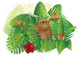 Tropical Rainforest  Jungle Monkey vector Illustration