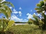 Inner part of one of the small Motus of Marlon Brando's atoll Tetiaroa, Tahiti, French Polynesia