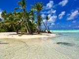 Palm trees on the white sanded beaches in the turquoise lagoon of Marlon Brando's atoll Tetiaroa, Tahiti, French Polynesia