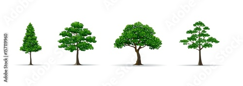 tree set realistic vector illustration - 157119960