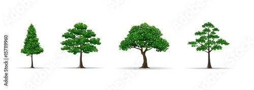 tree set realistic vector illustration - 157119960