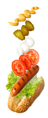 hot dog with flying ingredients  © alter_photo