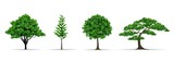 tree set realistic vector illustration - 157162352