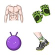 Men's torso, gymnastic gloves, jumping ball, sneakers. Fitnes set collection icons in cartoon style vector symbol stock illustration web.