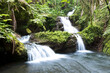 Hawaiin waterfall - 157200901