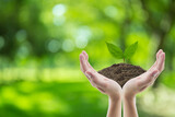 Hand holding soil and tree of nature background with environment concept. - 157208761