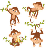 set of isolated monkey hanging on vine - vector illustration, eps - 157228305