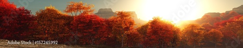 Papiers peints Marron Panorama of autumn landscape, autumn trees at sunset