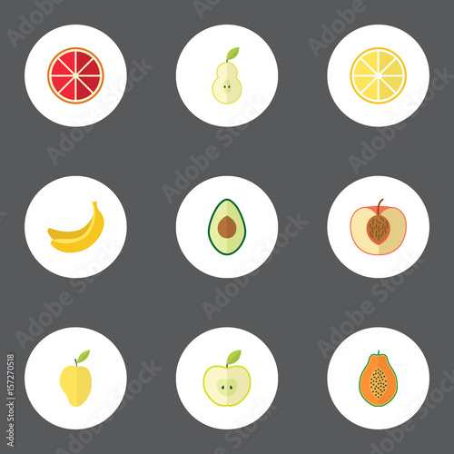 Flat Alligator Pear Jungle Fruit Lime And Other Vector Elements