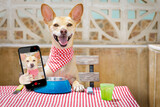 hungry chihuahua dog eating with tablecloth utensils at the table , food bowl , fork and knife inlcuded, taking a selfie with smartphone or mobile phone